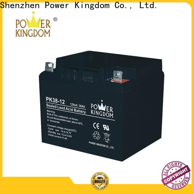 Power Kingdom Custom can i charge an agm battery with a regular charger factory price Power tools