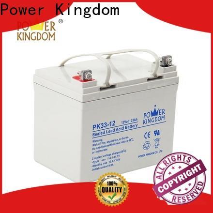Power Kingdom New 12v gel directly sale Automatic door system