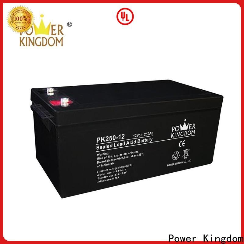 Power Kingdom Best valve regulated sealed lead acid customization Power tools