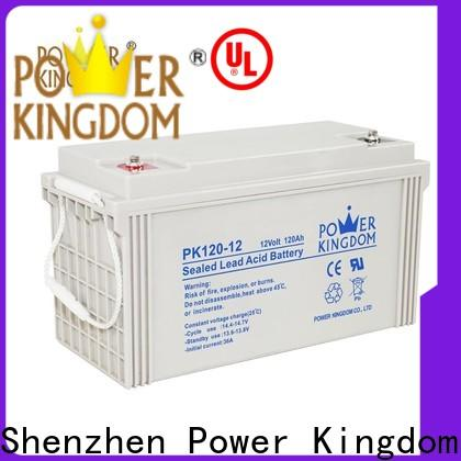 Power Kingdom High-quality 12v gel battery for sale free quote Automatic door system